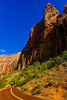 Along the Zion-Mt. Carmel Highway in Zion National Park, Utah, USA
