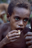 A young boy eating the sago grub, among the kombai and there neighbouring tribe the korowai, sago grubs are considered a delicassy. the young sago tree is felled and left for several months by which time the capricorn beetle has laid it's eggs in the trunk which develop into the lavea that is the sago grub. both the korowai and kombai hold sago festivals when many tribal groups come together to dance and sing and  feast on the sago grub.West Papua is home to over 300 tribes. They have inhabited the island for more than 40,000 years. Many of the last remaining tribal cultures on our planet can be found in West Papua. An astounding 15% of the world's languages are spoken there, by just 0.01% of the global population.