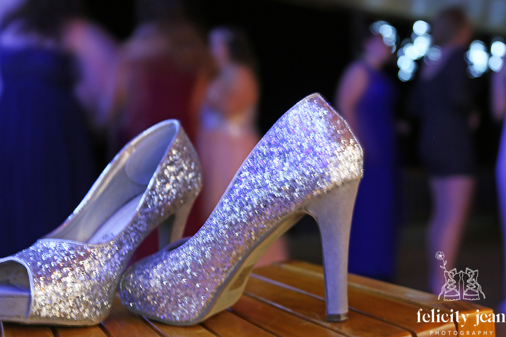event photography festivals school balls corporate functions birthday parties
