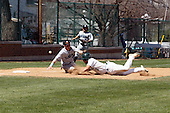 2013 Illinois Wesleyan Titans Baseball Photos