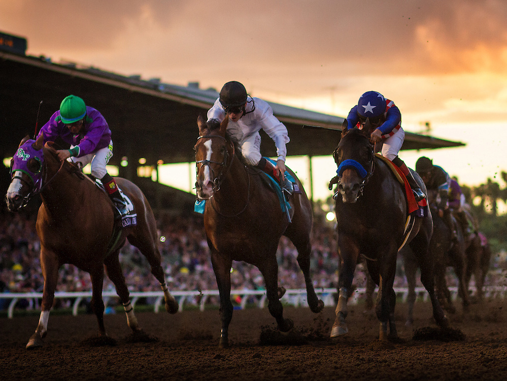 November 01 2014: Bayern , ridden by Martin Garcia defeats Toast of New York and Jamie Spencer (middle) and California Chrome with Victor Espinoza to win the Breeders' Cup Classic (G1) at Santa Anita Park in Arcadia, California on November 1, 2014.  Alex Evers/ESW/CSM