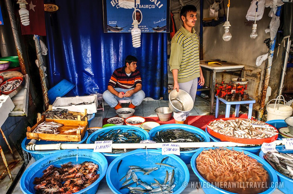 Tubs of fresh fish and prawns for sale at the Karakoy Fish Market in Istanbul near the Galata Bridge.