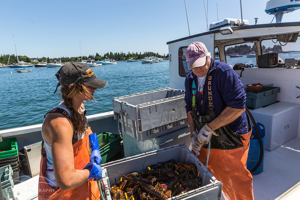 Captain Mike Mesko and sternwoman, Lillian Saul unload lobsters from 'Evening Call' at the Vinalhaven Fishermen's Co-op in Vinalhaven, Maine.