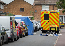 © Licensed to London News Pictures. 26/09/2016. London, UK.  A police tent covers an area where a man was stabbed in Braintree Road, Dagenham. Police were called to to a disturbance in Braintree Road on Sunday evening 25th September 2016 where officers found a man in his thirties suffering from stab wounds. He died at the scene a short while later. A murder investigation has been launched. Photo credit: Peter Macdiarmid/LNP