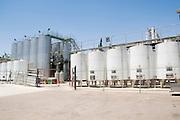 Israel, Lower Galilee, Tabor Winery, fermentation vats