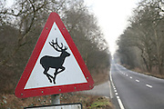 Triangular road sign warning of deer on road, Sutton, Suffolk, England