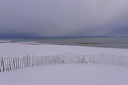 Snow Fence in Snow, Georgica Beach, East Hampton, Long Island, NY