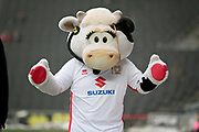 MK Dons mascot before the EFL Sky Bet League 1 match between Milton Keynes Dons and Bristol Rovers at stadium:mk, Milton Keynes, England on 3 March 2018. Picture by Nigel Cole.