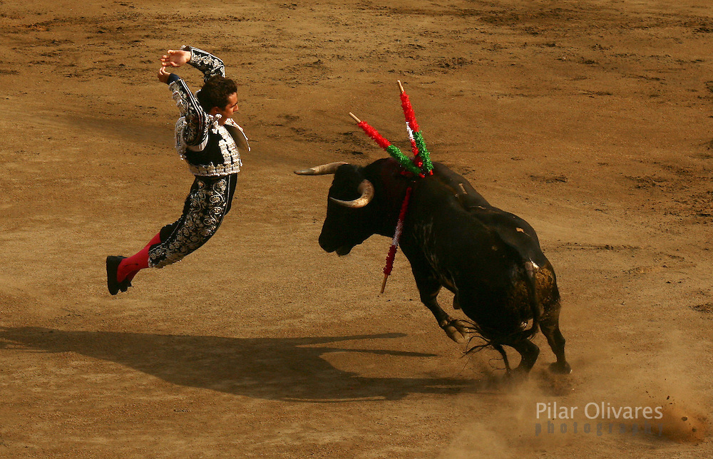 "Spanish Bullfighter David Fandila ""El Fandi"" drives banderillas into a bull during a bullfight in Acho square in Lima November 5, 2006. REUTERS/Pilar Olivares(PERU)"