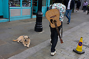 A guitar man walks through a Waterloo street with a dog sitting on the pavement.