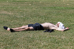 © Licensed to London News Pictures. 12/08/2016. LONDON, UK.  A man covers his head from the sun as he sunbathes during the hot and sunny weather today in Green Park in London this lunchtime.  Photo credit: Vickie Flores/LNP