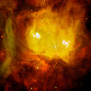 NGC 2080, nicknamed 'The Ghost Head Nebula,' is one of a chain of star-forming regions lying south of the 30 Doradus nebula in the Large Magellanic Cloud. Hubble Space Telescope (HST).