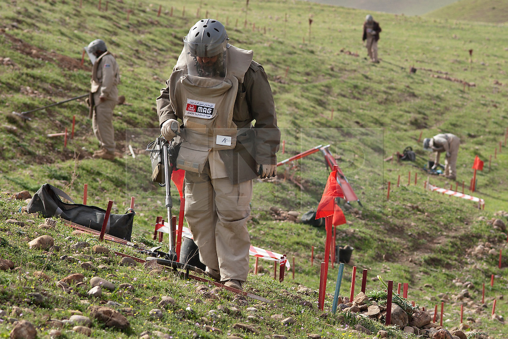 © Licensed to London News Pictures. 03/04/2013. London, UK. UN International Mine Awareness Day [FILE PHOTO NOT FOR ONLINE USE].  With other members of his team working in the background a Mines Advisory Group deminer member uses his mine detector in a minefield near Khalo Bazany Village, Kirkuk, Iraq.  Laid by Iraqi forces in 1987 to stop Kurdish Peshmerga using the area as a route to attack Kirkuk deminers have found a total of 38 mines so far, once cleared the area will be used by local villagers to graze livestock. Photo credit: Matt Cetti-Roberts/LNP