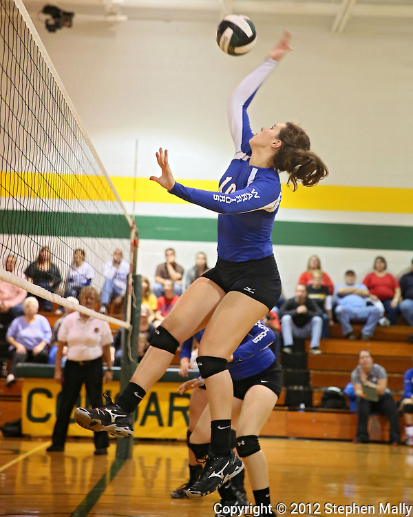 Washington's Danielle Franklin (10) goes up for a kill during the MVC Volleyball Tournament semifinal game between the Wahlert Golden Eagles and the Washington Warriors at Kennedy High School in Cedar Rapids on Saturday October 13, 2012. Washington defeated Wahlert 25-13, 25-20.