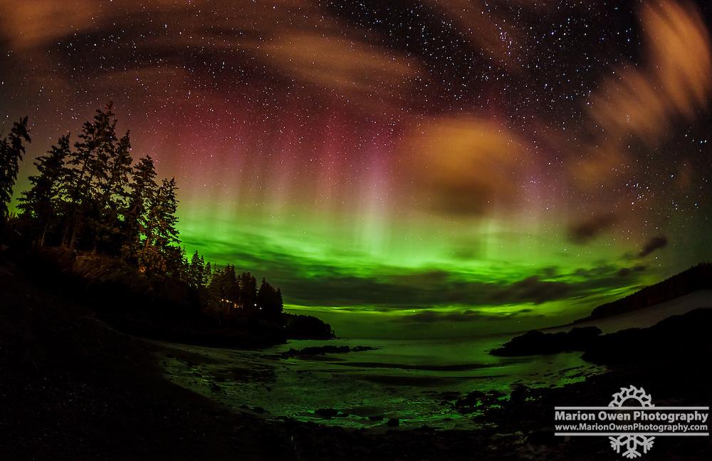 Northern lights and streetlights create a sherbet sky in Kodiak, Alaska