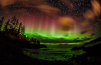 Northern lights and streetlights create a sherbet sky in Kodiak, Alaska