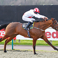 Dubawi Light and Luke Morris winning the 2.00 race