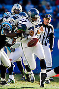 CHARLOTTE, NC - DECEMBER 16:   Shaun Alexander #37 of the Seattle Seahawks fumbles the ball against the Carolina Panthers at Bank of America Stadium on December 16, 2007 in Charlotte, North Carolina.  The Panthers defeated the Seahawks 13-10.  (Photo by Wesley Hitt/Getty Images) *** Local Caption *** Shaun Alexander.. Sports photography by Wesley Hitt photography with images from the NFL, NCAA and Arkansas Razorbacks.  Hitt photography in based in Fayetteville, Arkansas where he shoots Commercial Photography, Editorial Photography, Advertising Photography, Stock Photography and People Photography