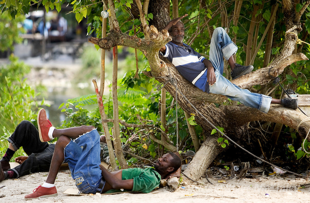NEGRIL, WESTMORELAND : February 19, 2007 -- JAMAICA: NEGRIL: FAMILY REUNION -- Men from a fishing village relax in a tree as the Lewis family heads to Negril February 19...Steve McKinley Photo.