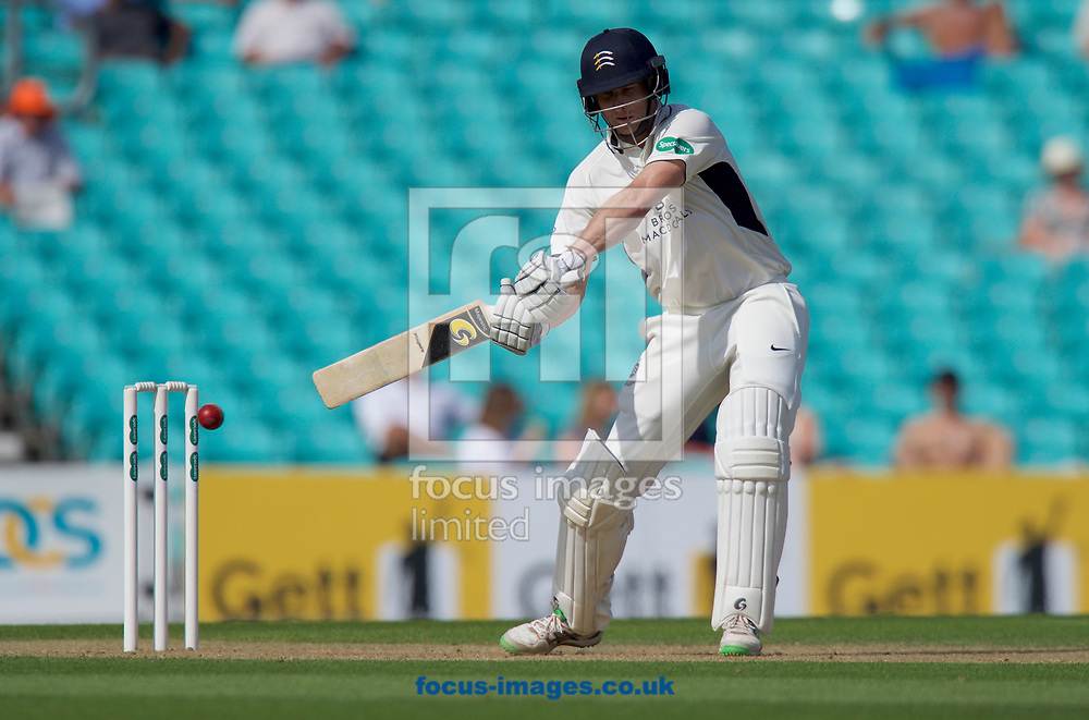 Adam Voges of Middlesex County Cricket Club batting during the Specsavers County Championship Div One match at the Kia Oval, London<br /> Picture by Alan Stanford/Focus Images Ltd +44 7915 056117<br /> 28/08/2017