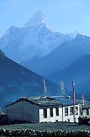 Nepal - Region du Solu-Khumbu - Village Sherpa - Montagne Ama Dablam