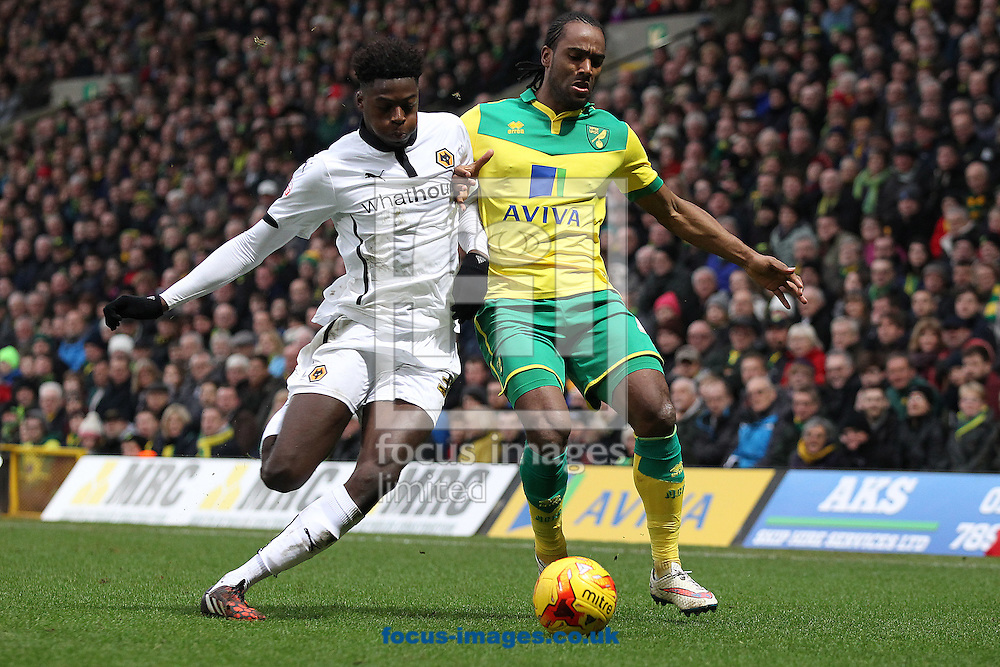Dominic Iorfa of Wolves and Cameron Jerome of Norwich in action during the Sky Bet Championship match at Carrow Road, Norwich<br /> Picture by Paul Chesterton/Focus Images Ltd +44 7904 640267<br /> 14/02/2015