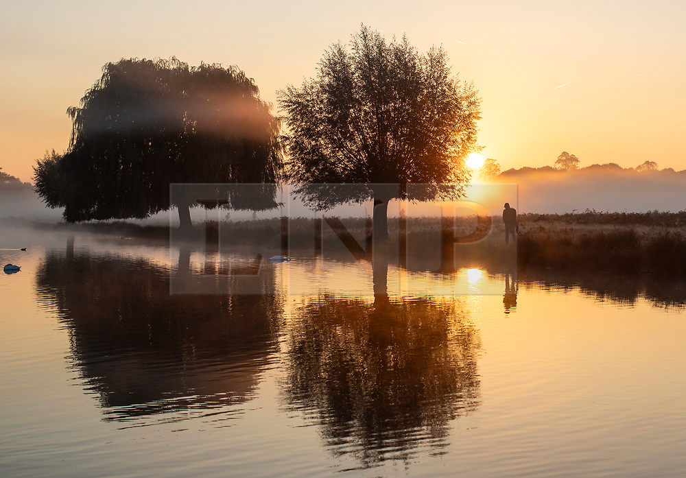 © Licensed to London News Pictures. 10/10/2018. London, UK. Sunrise in Bushy Park, south London. Forecasters are expecting unusually warm temperatures for October. Photo credit: Rob Pinney/LNP