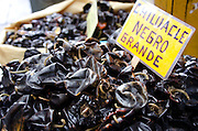 Chiluacle negro grande, also known as 'chile huacle,' at the Mercado Benito Juárez, Oaxaca. These unusual chiles are an essential ingredient for Oaxacan mole negro, and are only grown the La Cañada region.