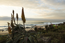 July 13, 2017 - First light revealed a groomed lineup but with a good looking forecast a layday was called at the Corona Open J-Bay...Corona Open J-Bay, Eastern Cape, South Africa - 13 Jul 2017. (Credit Image: © Rex Shutterstock via ZUMA Press)