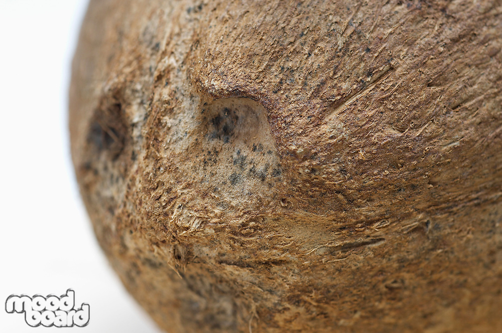 Close-up of coconut