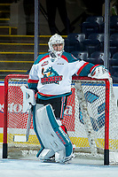 KELOWNA, CANADA - JANUARY 17: Brodan Salmond #31 of the Kelowna Rockets stands in net during warm up against the Lethbridge Hurricanes on January 17, 2017 at Prospera Place in Kelowna, British Columbia, Canada.  (Photo by Marissa Baecker/Shoot the Breeze)  *** Local Caption ***