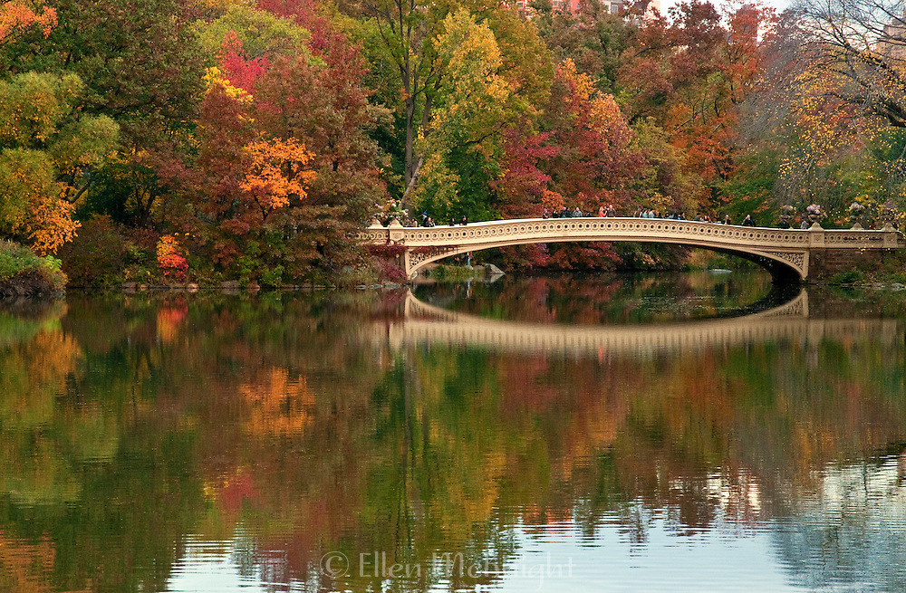 Autumn View of Bow Bridge in Central Park
