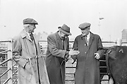 Salesman Richard Kenny watches a bargain struck between Abbey Thompson and George Walker at the Dublin Cattle Market..25.04.1962<br />