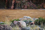 The Colorado River near Phantom Ranch. Grand Canyon National Park in Arizona.