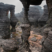 A labyrinth of wind-carved rock formations covers the tabletop plateau of Mount Roraima, one of Venezuela's most famous tepuis. Canaima National Park, Venezuela.