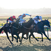 Arch Villain and Jim Crowley winning the 2.30 race