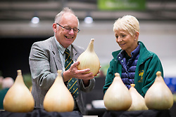 © Licensed to London News Pictures. 15/09/2017. Harrogate UK. Judging has begun this morning at the Giant Vegetable competition at this years Harrogate Autumn Flower Show in Yorkshire. Photo Credit: Andrew McCaren/LNP