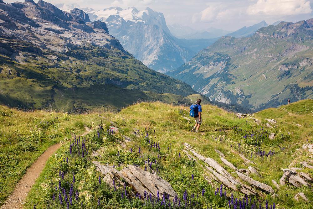 Hiker on the Via Alpina, Swiss Alps