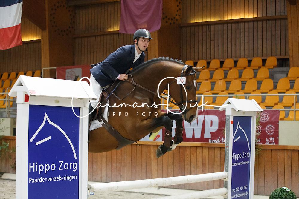 46 - Krezip DH<br /> BWP Hengstenkeuring 2014<br /> Zilveren Spoor Moorsele 2014<br /> &copy; Dirk Caremans
