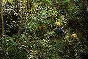 A jungle stretch of trail in an ever changing ecosystem of riding<br /> Matt Erbentraut