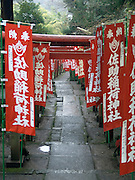 gates at the Sasuke Inari shrine in kamakura Japan