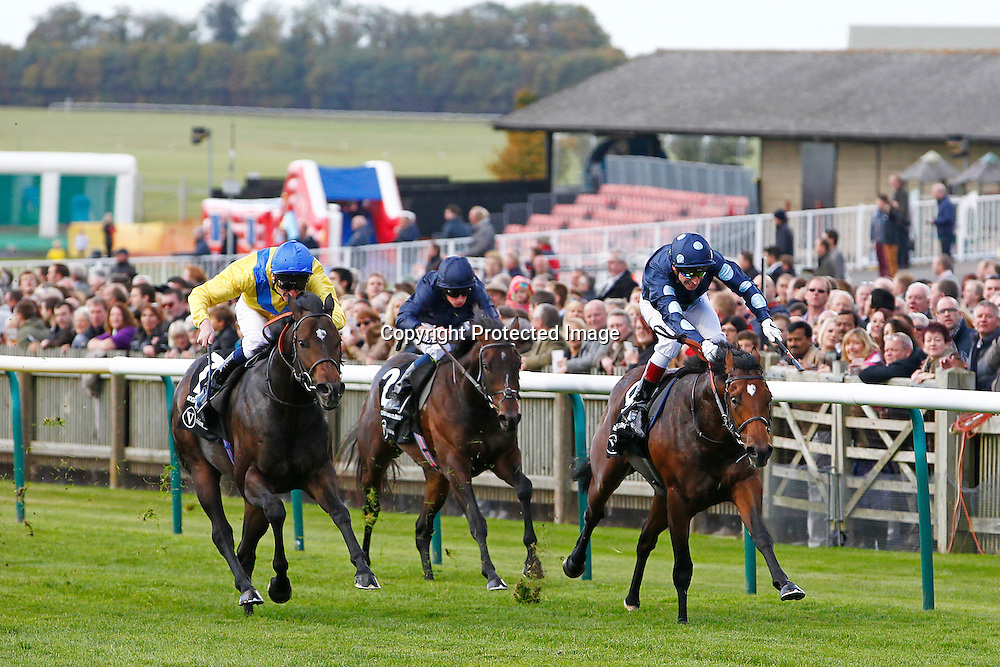 Reckless Adandon and G Mosse winning the 2.20 race