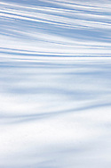 Abstract tree shadows on a snowy hill