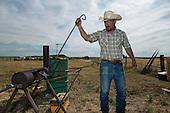 Ranching in Oklahoma