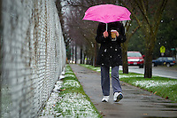 Jan Line walks along 15th Street in Coeur d'Alene toward her daughter's home under the cove of her pink umbrella during the snowfall Thursday morning.