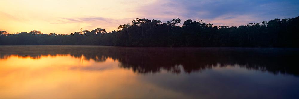 ECUADOR, ORIENTE, AMAZON RIVER BASIN Napo River (Amazon tributary) down river from Coca, panorama of primary, uncut jungle rainforest