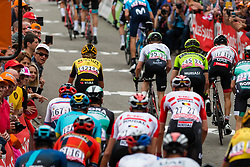 Peloton with Koen Bouwman (NED) of Team Jumbo-Visma (NED,WT,Bianchi) during the 2nd lap on Mur de Huy at 2019 La Fl&egrave;che Wallonne (1.UWT) with 195 km racing from Ans to Mur de Huy, Belgium. 24th April 2019. Picture: Pim Nijland | Peloton Photos<br /> <br /> All photos usage must carry mandatory copyright credit (Peloton Photos | Pim Nijland)