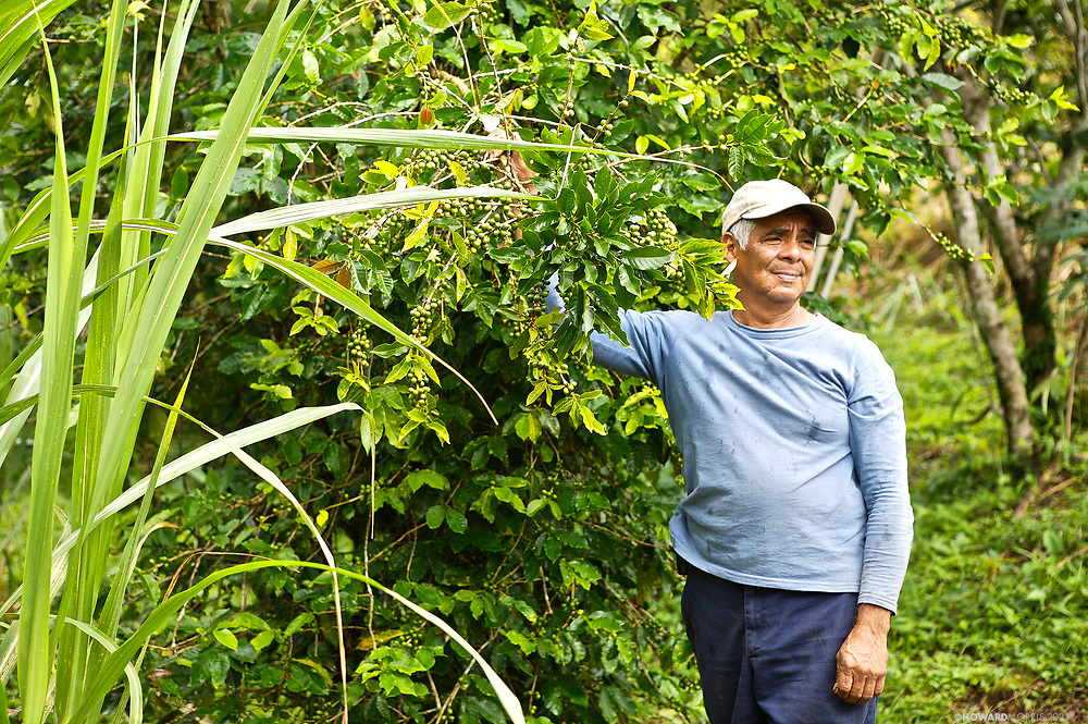 A local Coffee grower stands proudly with his next crop, Chiriqui Highlands, Panama.