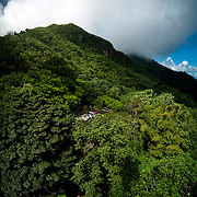Clouds drift past the lush canopy of trees in Puerto Rico's El Yunque National Forest.  The view, afforded by the Yokahu Tower near the center of the park, gives visitors a vantage point from which to survey the expanse of the park, including some of its 24 miles of recreational trails. El Yunque is located the island's northeast and is maintained by the National Park Service.<br /> <br /> This is a panoramic composite.
