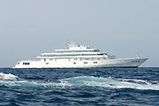 Larry Ellison`s Super Yacht Rising Sun, Valencia, Spain. 17/6/2005